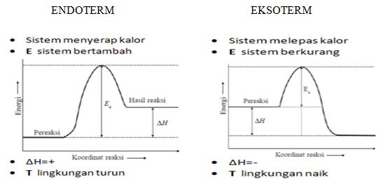Kenali perbedaan reaksi eksoterm dan reaksi endoterm dengan mudah endoterm eksoterm ccuart Gallery