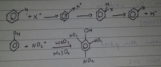 sintesis asam pikrat