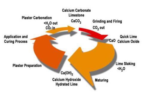 Siklus Kalsium Karbonat
