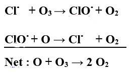 ClOx cycle