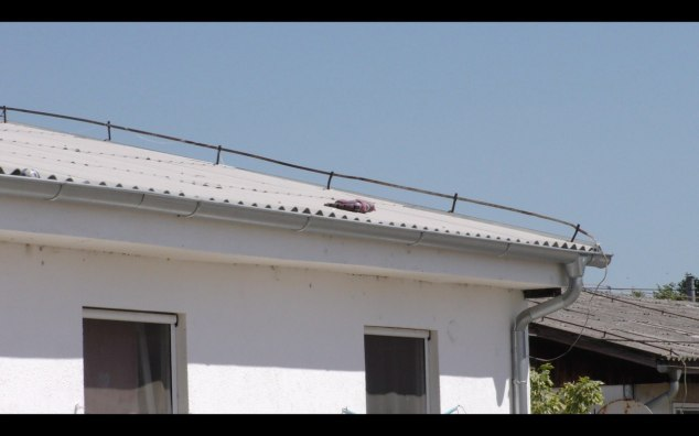 Inlineskater auf Hausdach