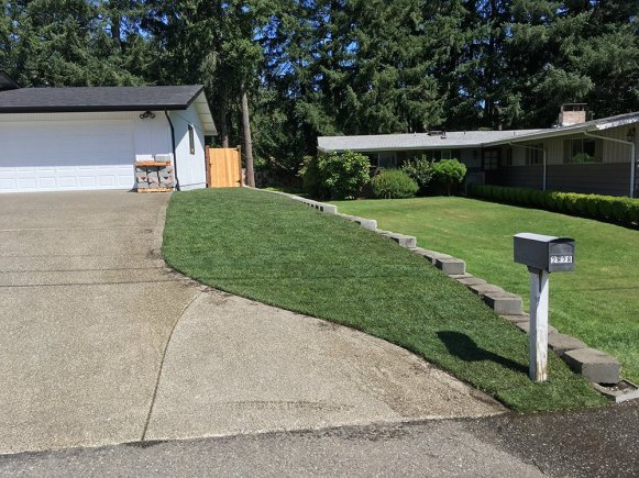 AFTER: Sod