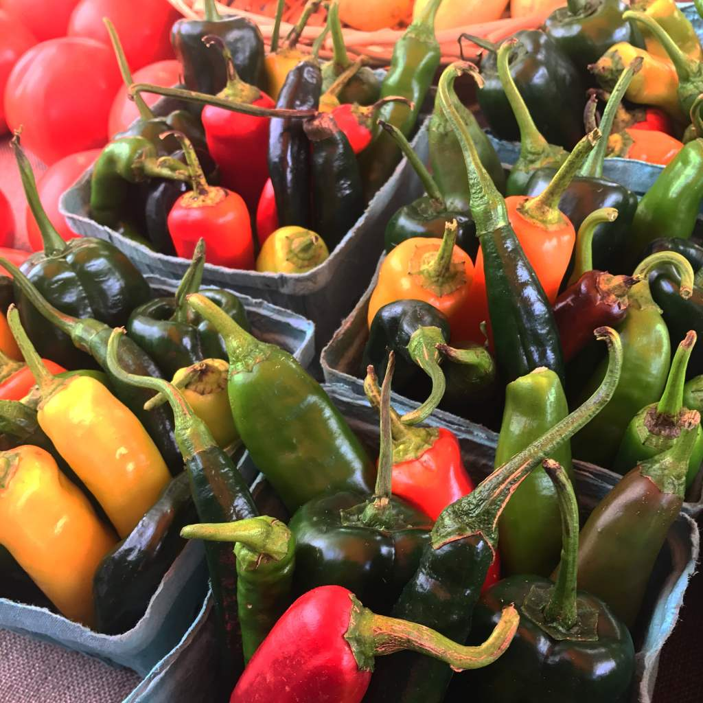 Pepper medley for salsa or soup. Vegetarian   Vegan   Soup   Soup Recipe   Hatch Chili Recipe   30 Minute Meal