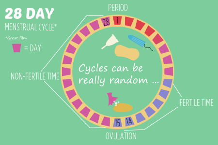BISH reproductive bits 28 day menstrual cycle