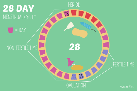 BISH fertility 28 day menstrual cycle