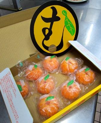 柑橘ミカンティー