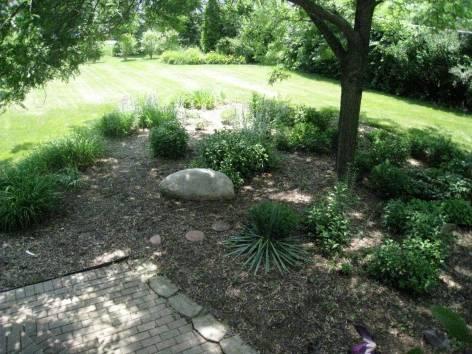 My not-so-English garden...