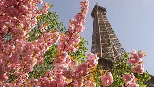 I Love Paris in the Springtime….