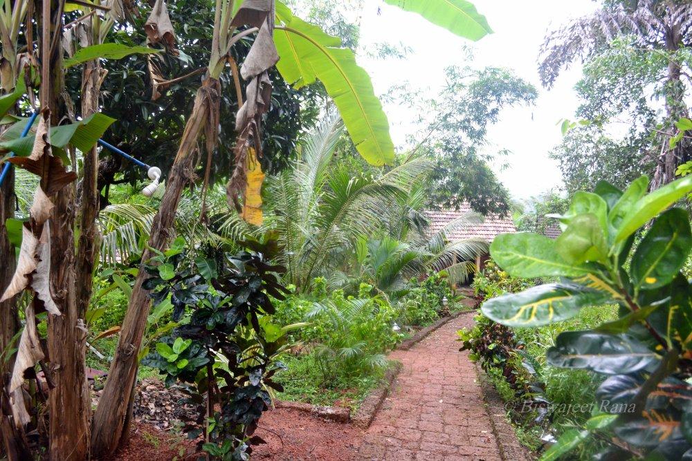 Travelogue: Solo backpacking trip - Gokarna (3/6)