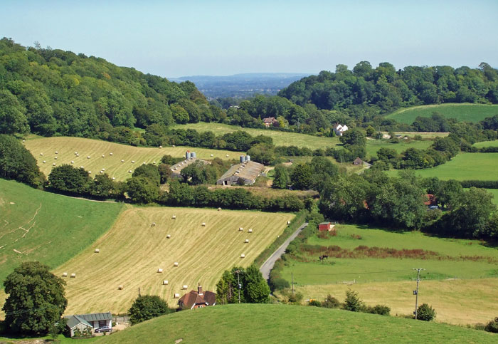The South Downs in Hampshire, near the village of East Meon, is a softer part of the British landscape