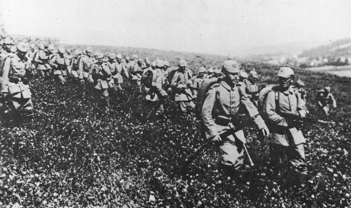Germany invades Belgium, causes of the First World War
