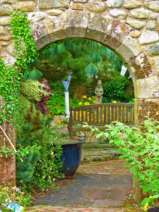 Larch Cottage, Melkinthorpe, plants