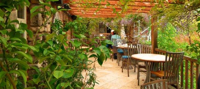 A different garden centre