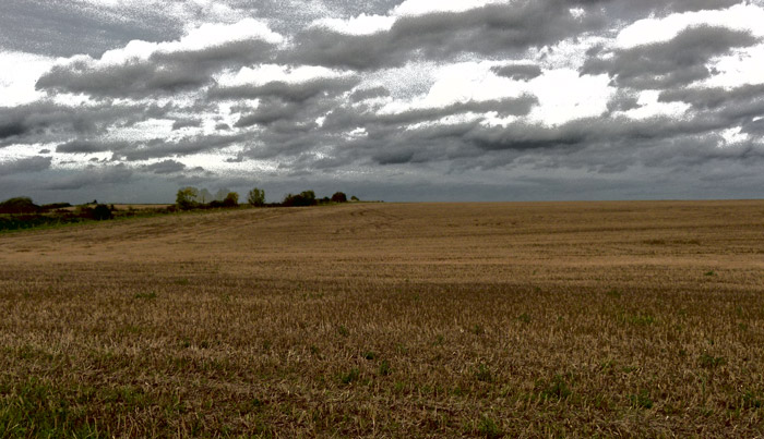 The field of Towton
