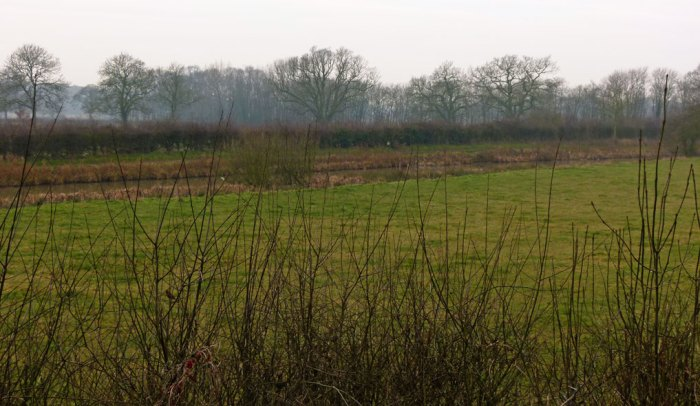 Was this where the fighting took place at Bosworth? A damp area near a more modern canal?-07