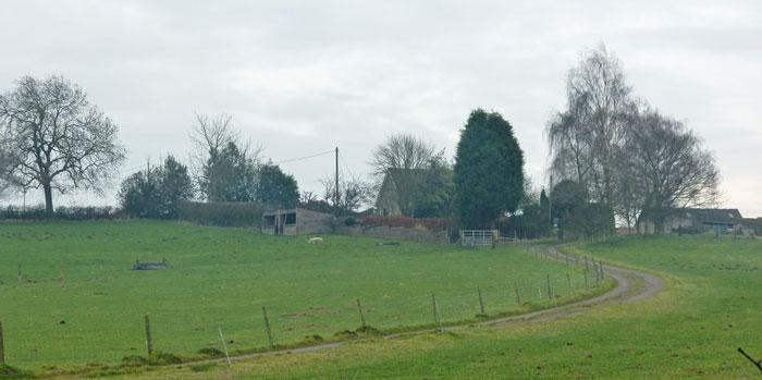 Ambion farm, Bosworth