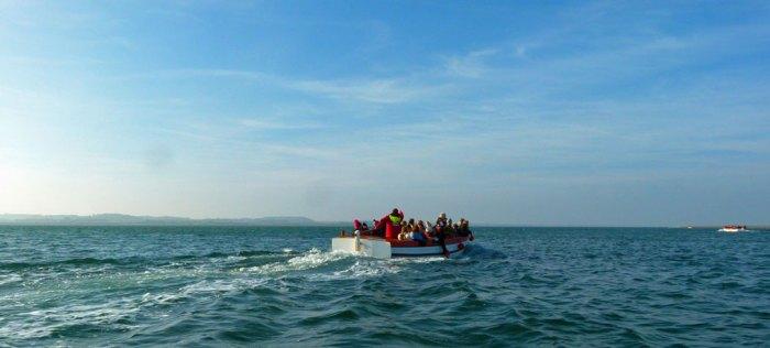 Blakeney seal trip boat