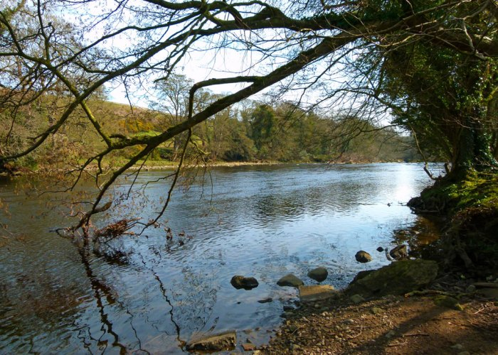 The River Tees, Egglestone
