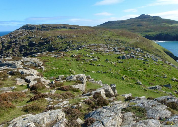 Looking east from St David's Head, across the Iron Age settlement with Carn Llidi on the horizon