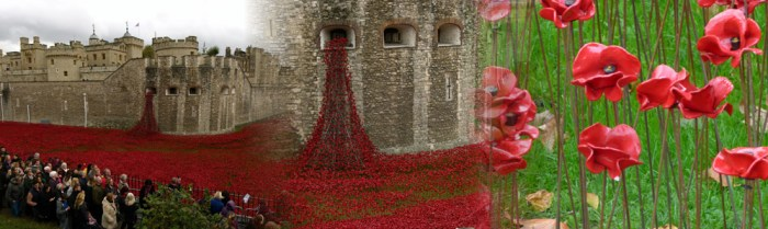 Bloodswept lands and seas of red, poppies at the Tower