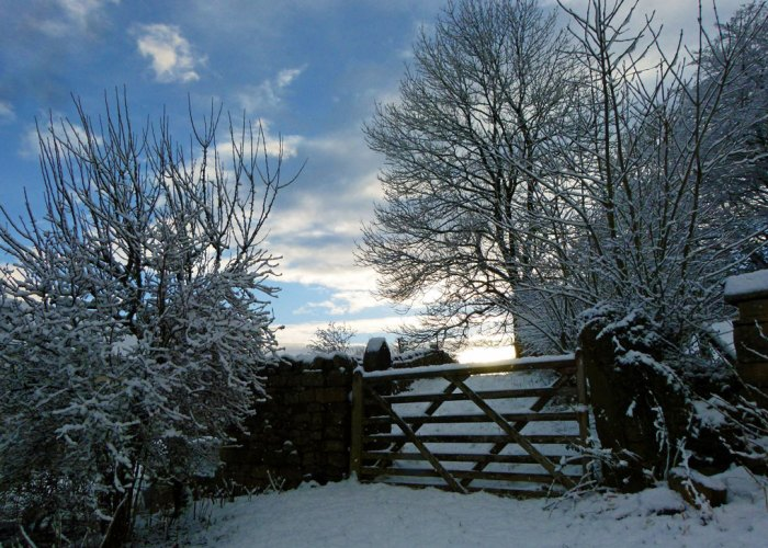 Wintry Christmas morning, Christmas magic