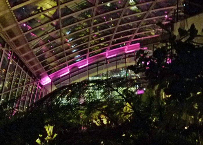 London, Sky Garden, night