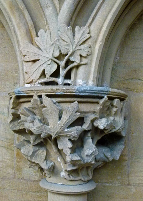 Leaves of Southwell