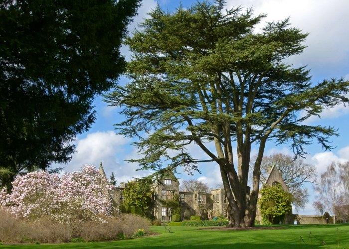Nymans, National Trust, Sussex