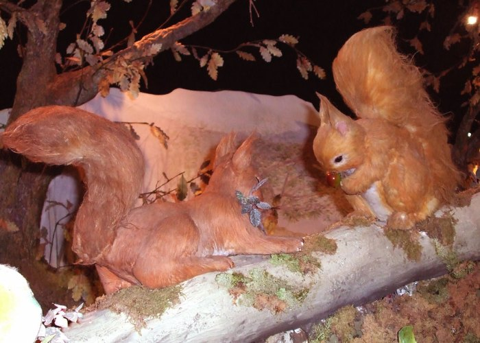 Squirrel Nutkin, Beatrix Potter