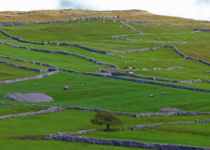 Drystone walls, Yorkshire Dales, countryside, visit Britain