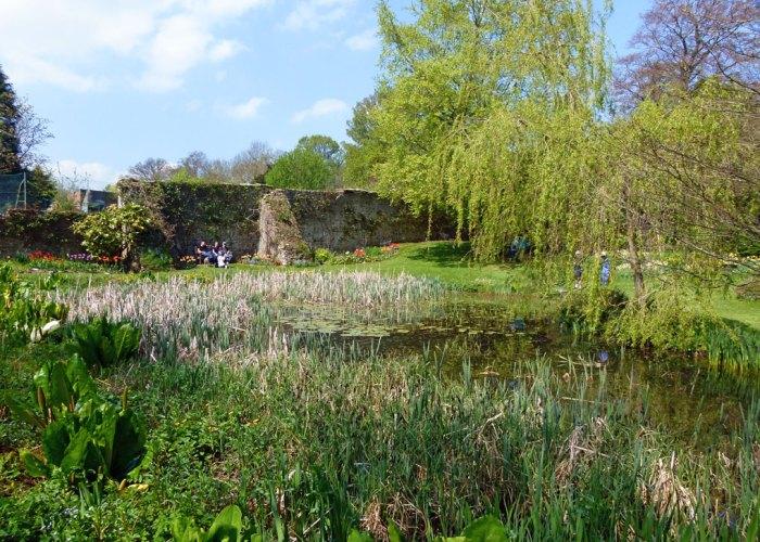 Reflection Pond, Constable Burton