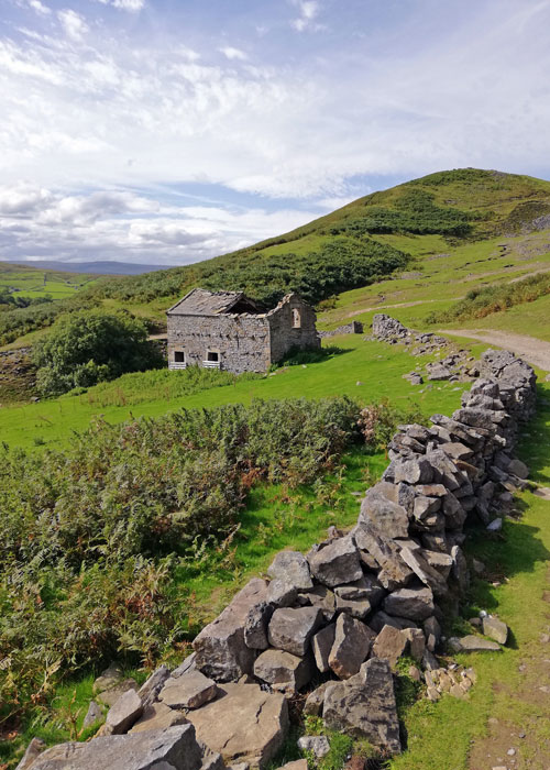 Field barn, Swaledale