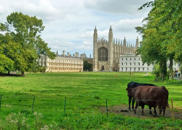 King's College, Cambridge, the Backs