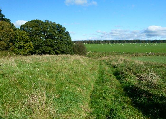 Footpath to St Ninian's