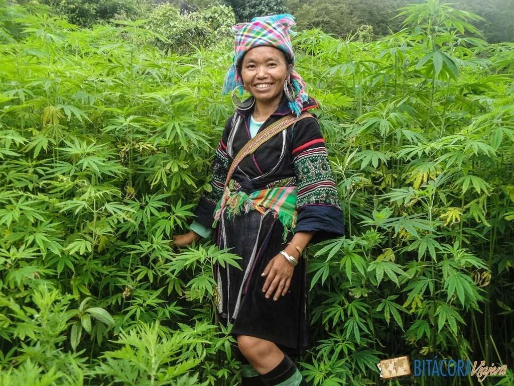 trekking-sapa-vietnam-4