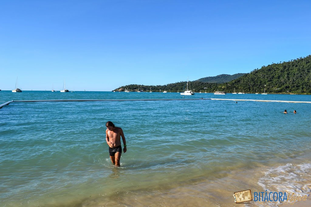 airle-beach-costa-este-australia-1