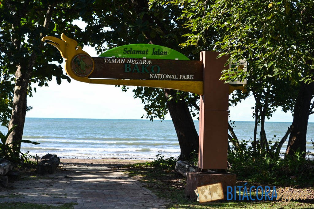 Parque Nacional Bako - Borneo Malasia (12)