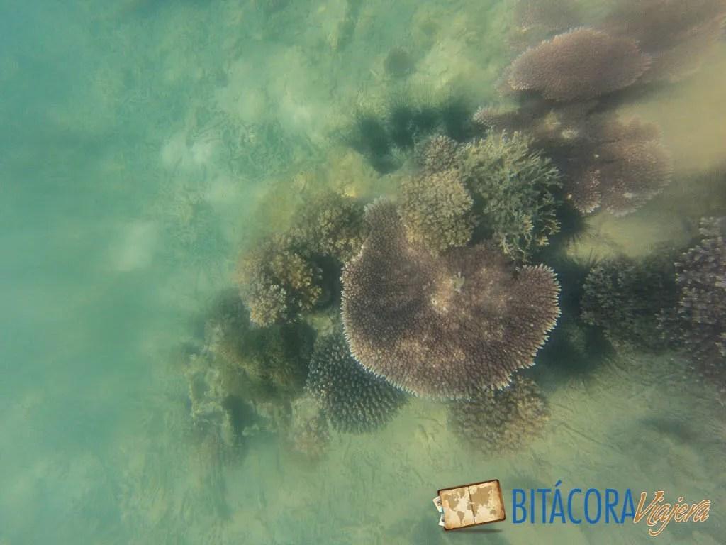 pulau kapas (7)
