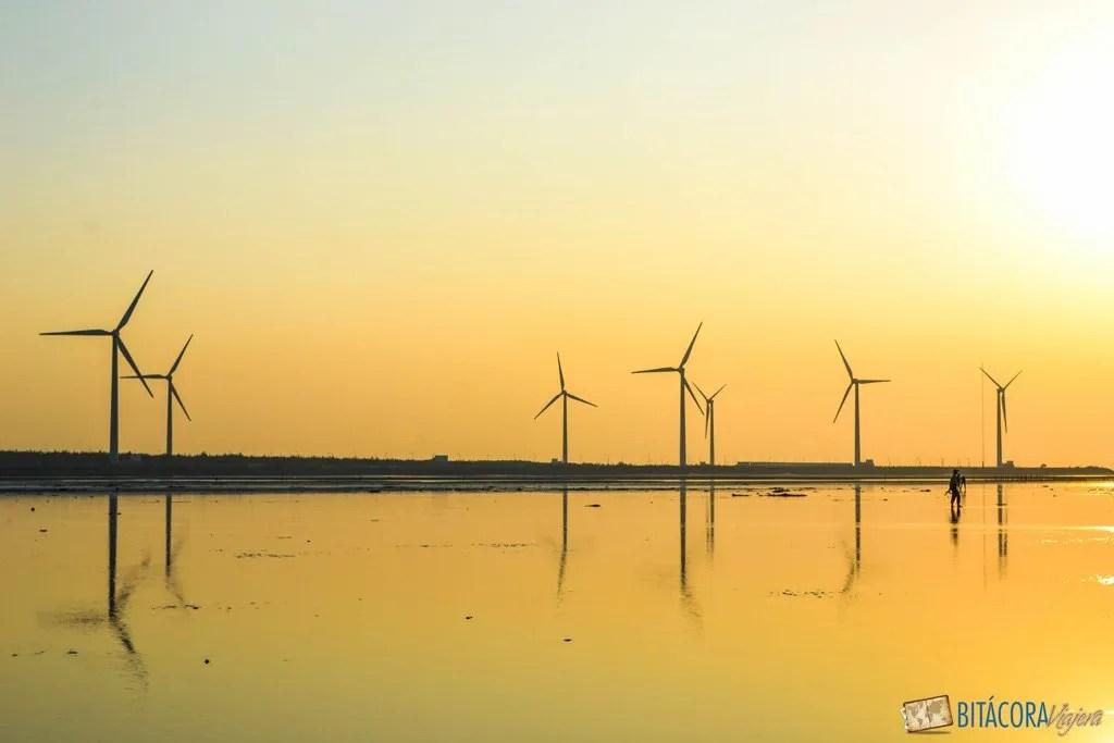 atardecer-wetlands-taichung