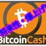 仮想通貨 ビットコインキャッシュ(BCH)の将来性と爆上げの可能性!