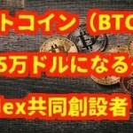 仮想通貨(暗号通貨)ビットコイン(BTC)は 年内5万ドルになる~ BitMex共同創設者