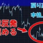 【仮想通貨】戻り高値?本格上昇?自律反発の見極め方(2018年8月3日)