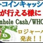 【BCH】ビットコインキャッシュでICOが行える様に!? Wormhole Cash/WHCとは。ロジャーバーが発表!