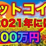 【仮想通貨】ビットコインBTC2021年には10万ドル(1100万円)になる!?