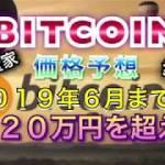 ビットコインの価格が2019年6月までに220万円を超える!それには機関投資家の参入が必要‼️