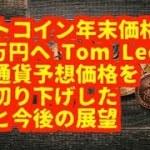 仮想通貨(アルトコイン)ビットコイン年末価格を 170万円へ Tom Lee氏が 仮想通貨予想価格を 大幅切り下げした 理由と今後の展望
