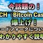 【仮想通貨】今話題のBCH(ビットコインキャッシュ)爆上げ!ハードフォークについてわかりやすく説明