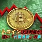 ビットコイン決済利用が激減、遠い「代替通貨」の夢