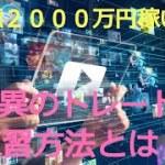 【仮想通貨】凡人が1億2000万円稼いだ驚異のトレード練習方法とは?リップル、ビットコイン、FX、株、全ての金融商品に通用する