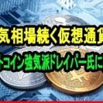 弱気相場続く仮想通貨 ビットコイン強気派ドレイパー氏に直撃【仮想通貨】